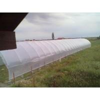 Poza 13 - Hobby greenhouses