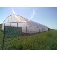 Poza 14 - Hobby greenhouses