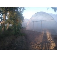 Poza 19 - Hobby greenhouses